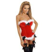 Women's Sexy Red Christmas Santa Costume Bustier Corset